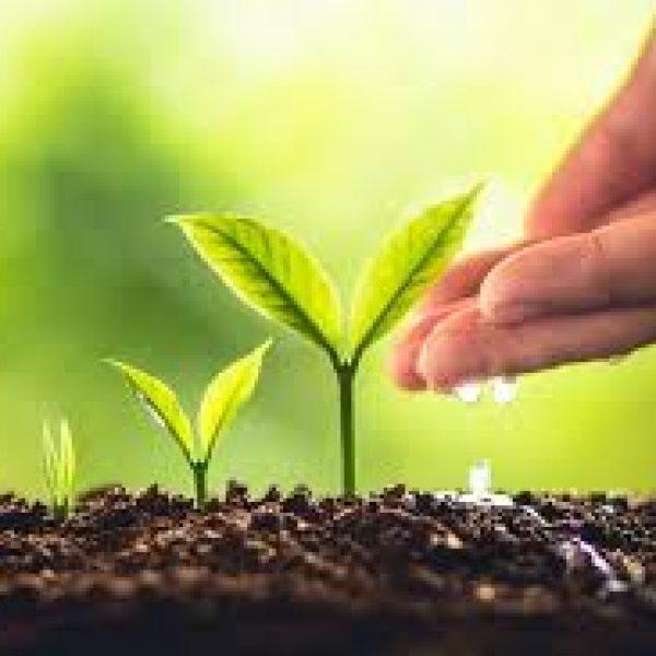 Perché fare un percorso di crescita personale